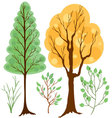 set of trees and branches colored vector image