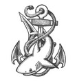 shark and anchor tattoo emblem vector image vector image
