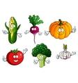 Tomato pumpkin broccoli corn radish and garlic vector image vector image