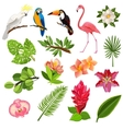 Tropical birds and plants pictograms set vector image vector image