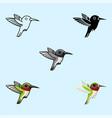 tropical hummingbird toy cool little one bird vector image vector image