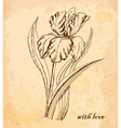 Vintage old background with iris with love Hand vector image