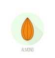 almond icon nut vector image vector image