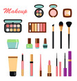 big color set of different decorative cosmetics vector image