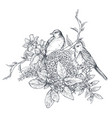 bouquet with hand drawn blossom branches and birds vector image vector image