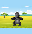 cartoon gorilla in the savannah landscape vector image vector image