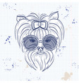 color sketch of elegant dog vector image