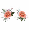 floral creamy roses bouquet design vector image vector image
