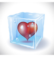 Ice cube with heart vector image vector image