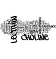 lecithin and choline text background word cloud vector image vector image