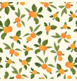 orange tangerine mandarin clementine green leaves vector image