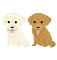 portrait of two cute labrador puppies vector image vector image