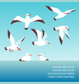 atlantic seabirds flying background design vector image vector image