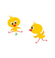 cartoon cute chicken characters set vector image vector image