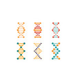 dna strands set spiral genetic material signs vector image vector image