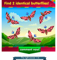 find 2 identical butterflies vector image vector image