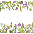 seamless horizon double border with greenery vector image