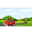 a tiger cub in a car vector image vector image