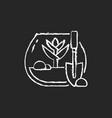 diy tropical terrarium chalk white icon on dark vector image