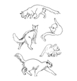 Set of sketch cats vector image