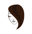 women face with straight hair vector image vector image