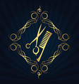 scissors and hairbrush for hairdressers vector image