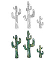 cactus painted in doodle style vector image vector image