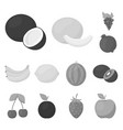 different fruits monochrome icons in set vector image