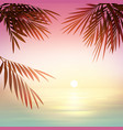 pink tropical sunset vector image