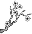 Sakura retro vector image vector image