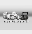 sport equipment fitness weights gray vector image
