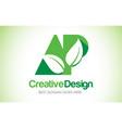 ap green leaf letter design logo eco bio leaf vector image vector image