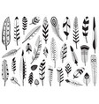 black and white bird feather silhouettes set vector image