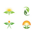 leaf nature logo template vector image vector image