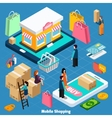 Mobile Shopping Isometric Concept vector image vector image