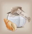 sea salt in a glass jar and seashell vector image vector image