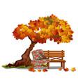 cozy bench under autumn tree outdoor vector image vector image