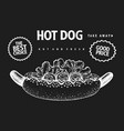 hand drawn hot dog banner fast food on chalk vector image vector image