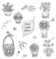 Hand drawn indoor plants flowers in vases and vector image vector image
