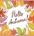 hello autumn hand draw banner vector image
