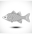 fish isolated on a white background vector image
