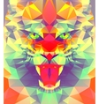 Abstract polygonal tiger vector image vector image