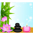 background Spa flower vector image vector image