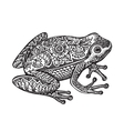 Black and white ornate doodle frog in graphic vector image