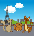 cartoon French pets vector image vector image