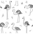 exotic tropical flamingo birds mistletoe elements vector image