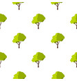 green tree with fluffy crown pattern flat vector image vector image