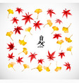 leaves gingko tree and red japanese mapl vector image vector image