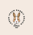 line style rabbit or hare face with retro vector image