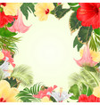 seamless frame tropical flowers hibiscus vector image vector image